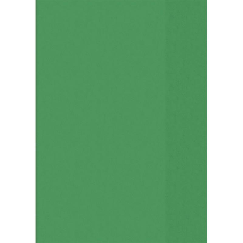BRUNNEN Hefthülle · DIN A4 · transparent · grün