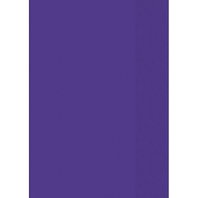BRUNNEN Hefthülle · DIN A4 · transparent · violett