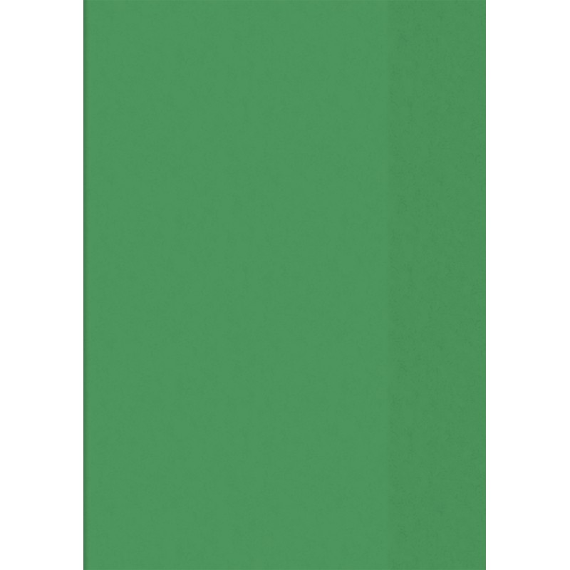 BRUNNEN Hefthülle · DIN A5 · transparent · grün