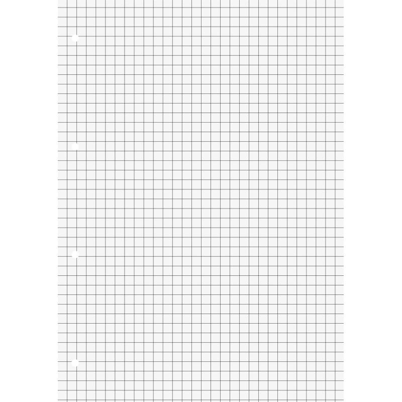 BRUNNEN Schulblock · DIN A4 · Lineatur 7 · 50 Blatt · Premium