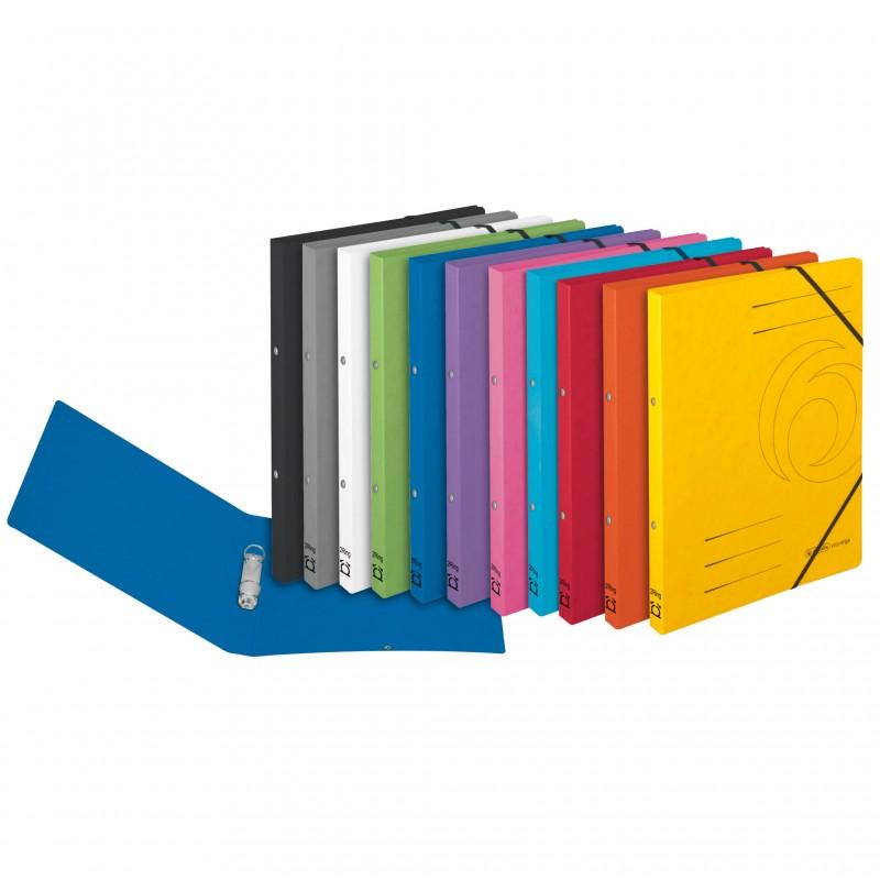 Herlitz Ringbuch / Ringhefter · colorspan · A4 · schmal · grün